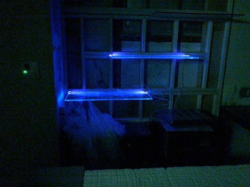 バーのガラス棚間接照明_200629_5-1